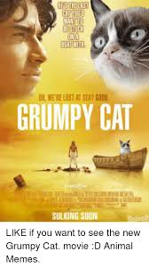 New Grumpy Cat Meme - 25 best memes about new grumpy cat new grumpy cat memes