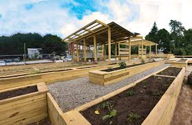a student designed community garden sprouts in rhode island