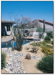 Water Ponding In Backyard Xeriscape Landscaping With Style In The Arizona Desert