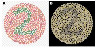 Tests For Color Blindness What Is Color Blindness Causes U0026 Overview Study Com