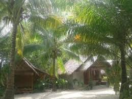 best price on the bananas bungalow in krabi reviews