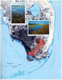 Map Of Southwest Fl Sofia Pp 1011 Ecosystems Of South Florida Freshwater And