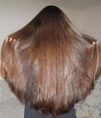 بعض الاعشاب المفيده والمجربه للجميع انواع الشعر