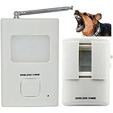 Amazon Electronic Barking Secure Watch Dog Camera &