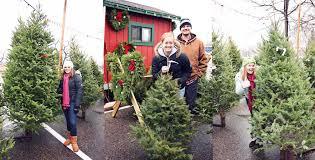 buy christmas tree buy christmas tree where to buy christmas tree coach for