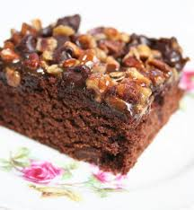 best 25 turtle brownies ideas on pinterest best sharpening