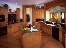 Black Appliances Kitchen Ideas Kitchen Cabinet Color Ideas With Black Appliances And