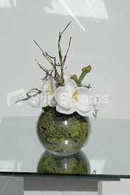 Small Vase Flower Arrangements Shop Small White Orchid Floral Home Arrangement Table Vase Display