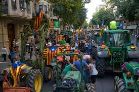 threatened by madrid catalonia referendum is game of cat and