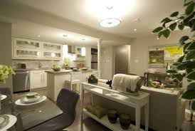 Basement Apartment Ideas - Designing a basement apartment