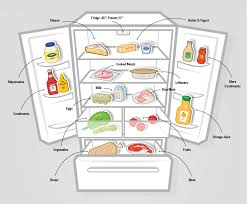 how to organize your fridge for a fresher and longer life of food