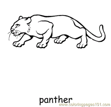 panther coloring free panther coloring pages
