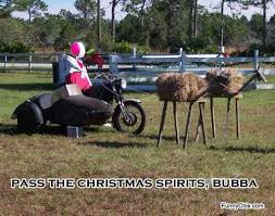 the 35 best funny christmas pictures