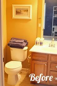 kids and guest bathroom ideas video and photos madlonsbigbear com