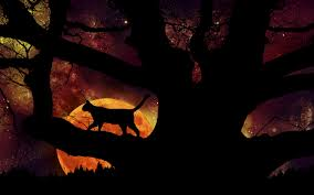 halloween night wallpaper magic of halloween night by silverbeam on deviantart