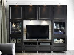 Ikea Kitchen Storage Cabinet by Kitchen Living Room Storage Units Kitchen Countertop Storage