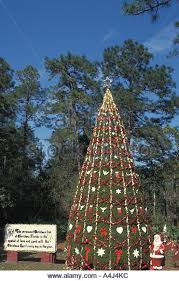 Decorate Christmas Tree All Year by Town Christmas Florida Tree Stock Photos U0026 Town Christmas Florida