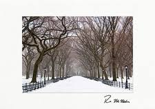 personalized boxed christmas cards new york city christmas cards new york city cards