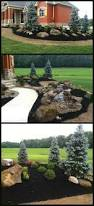 Backyard Trees Landscaping Ideas by Best 20 Evergreen Trees Landscaping Ideas On Pinterest