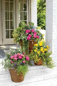 Southern Garden Ideas Container Garden Ideas Spectacular Container Gardening Ideas