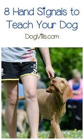 How To Train Dog To Stop Barking Best 25 Dog Training Tips Ideas On Pinterest Dog Training Dog