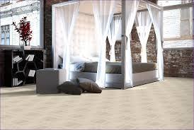 Best Bedroom Carpet by Bedroom Carpet Colors That Don U0027t Show Dirt What Color Carpet