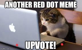 Meme Laptop - cat laptop memes imgflip