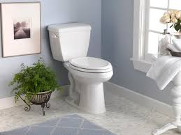 Handicap Accessible Bathroom Designs by Handicap Accessible Bathroom Creating A Design That Works