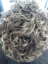 perm for grey hair the lovely grey hair gray hair perm and curly gray hair