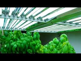best grow lights for vegetables which are the best indoor grow lights for you youtube