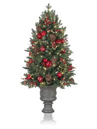 hill heritage potted christmas tree spice from balsam hill norway