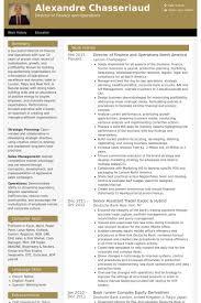 Mis Resume Example by Director Of Finance Resume Samples Visualcv Resume Samples Database