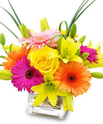 Flowers In Scottsdale Az - flowers hand delivered scottsdale arizona florist and chandler