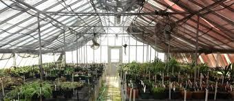 Botanical Garden Internship Boaler My Internship At Fairchild Tropical Botanic Garden Ohio