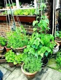 Container Vegetable Gardening Ideas Pot Vegetable Gardening Ideas Tomatoes Flower Pot Vegetable Garden