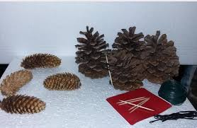 wow your guests with a pine cone tree hometalk