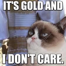 Grumpy Cat Coma Meme - 61 best grumpy cat images on pinterest funny memes hilarious