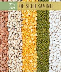 the art of seed saving future homesteads and gardens