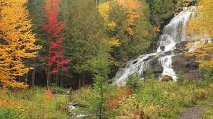 locked colorful fall foliage surrounding large
