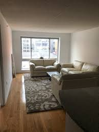 paint color for north facing 670 sq ft nyc apartment