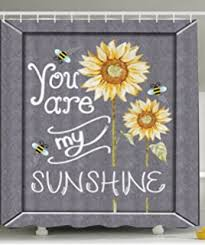 You Are My Sunshine Decorations Amazon Com Ambesonne Rustic Decor Collection Love Quotes You Are