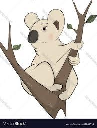 koala bear on a tree cartoon royalty free vector image