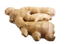 ginger u0026 the immune system livestrong com