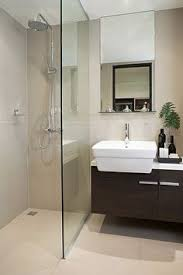 Modern Small Bathroom Diy Bathroom Remodel Planning Modern Small Bathrooms Linear