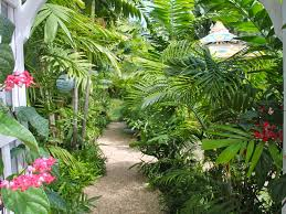 secluded kailua beach bungalow 100 steps vrbo