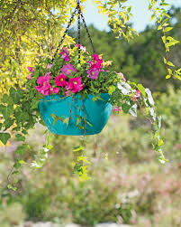 flower baskets viva self watering hanging basket hanging flower baskets