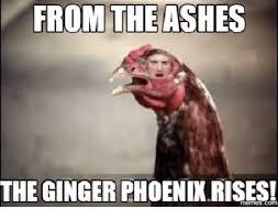 Ginger Memes - 25 ginger memes that are way too witty ginger meme memes and meme