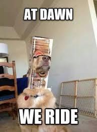 Frowning Dog Meme - official meme thread page 55 scion fr s forum subaru brz