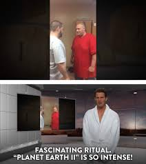 Tosh 0 Meme - ritual planet earth gif find download on gifer