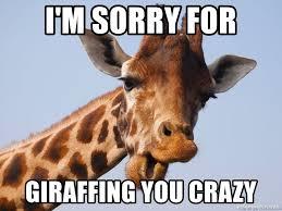 Sorry Meme - i m sorry for giraffing you crazy riddle giraffe meme generator